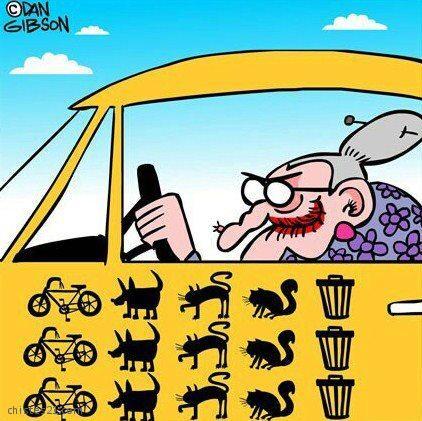 http://www.chistes21.com/img/chistes/13726_abuela-al-volante.jpg
