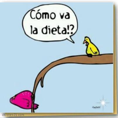6398_dieta.jpg